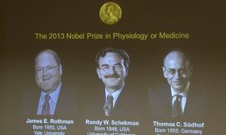 Winners of 2013 Nobel Prize in Physiology or Medicine